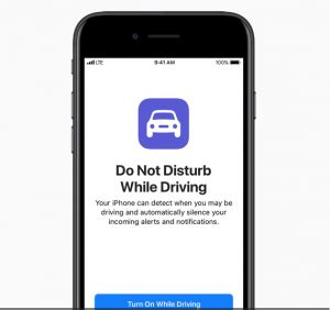 Texting and Driving Essay Example for Free